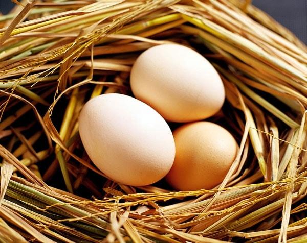 Những lợi ích không ngờ của trứng gà đối với sức khỏe con người 1