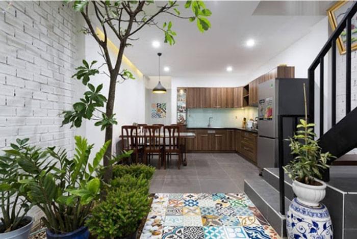 Nên đặt nhiều cây xanh trước phòng bếp