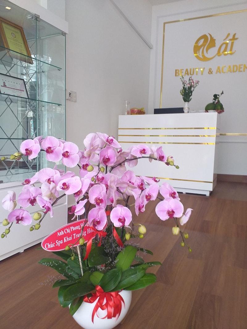 Nên tặng hoa lan may mắn ngày khai trương