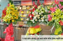 7 loại hoa mang lại may mắn nên tặng ngày khai trương